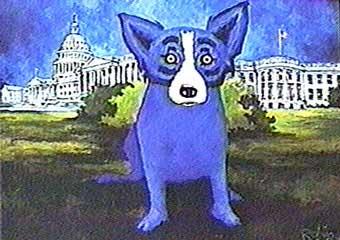 blue-dog-democrat